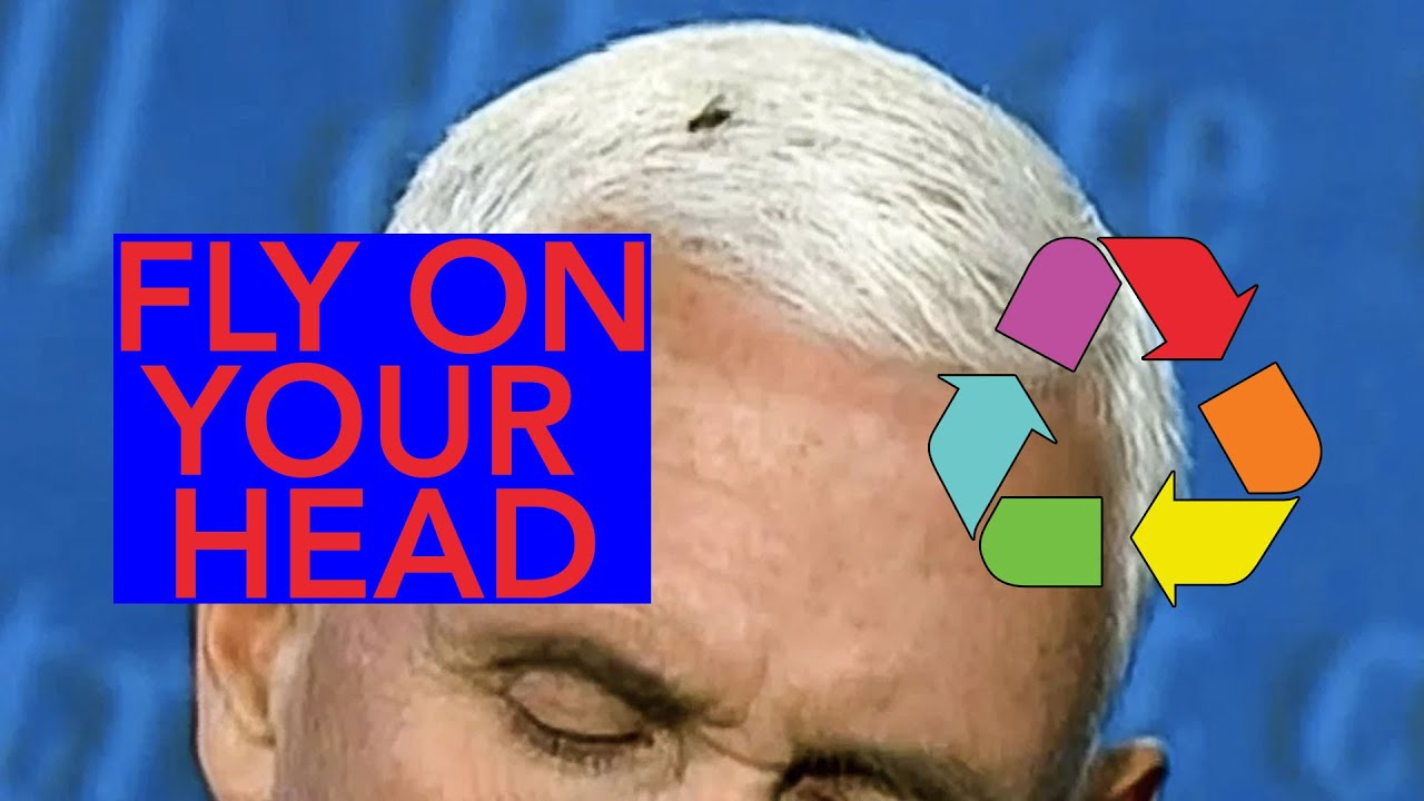 Fly On Your Head Remix - Mike Pence Fly Remix